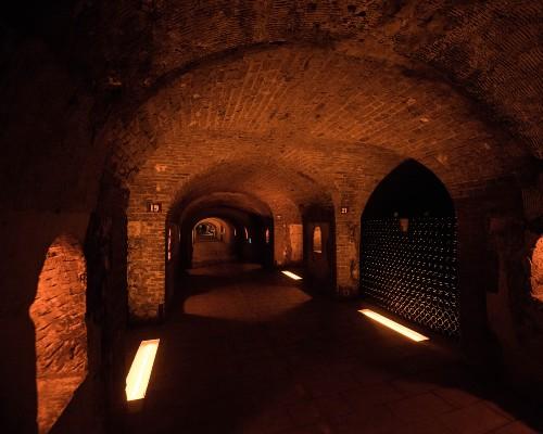 Épernay Champagne Cellar