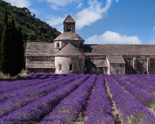 France Rail Journeys - Sénanque Abbey Provence